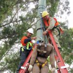 students practicing pole top rescue